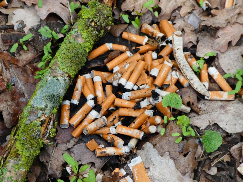 Unabhängige fordern sofortige Beseitigung der Müllprobleme im Gewerbegebiet Roggenhorst